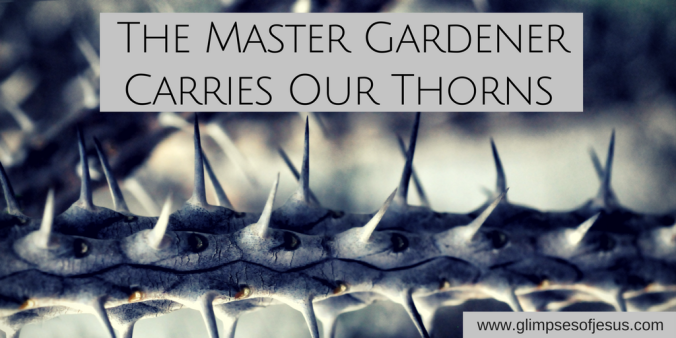 The Master Gardener Carries Our Thorns