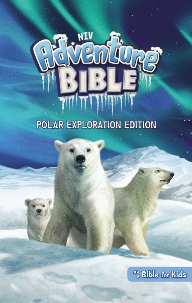 Adventure Bible Cover 2