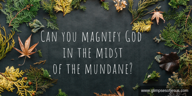 Can you magnify God in the midst of the mundane_